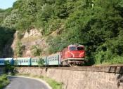 Narrow Gauge Line