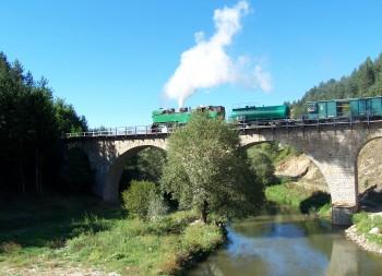 narrow gauge line (3)